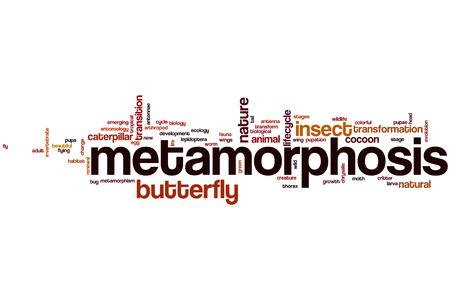 Metamorphosis word cloud concept