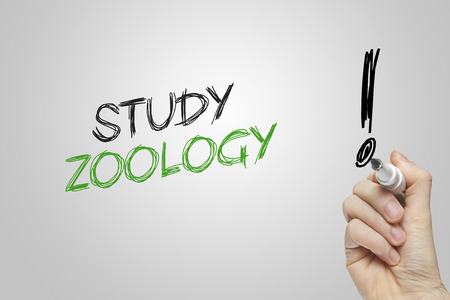 zoology: Hand writing study zoology on grey background