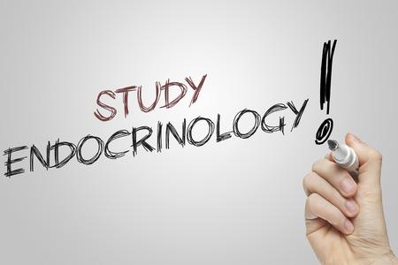endocrinology: Hand writing study endocrinology on grey background