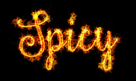 spicy: Spicy burning word written text in flames on black background