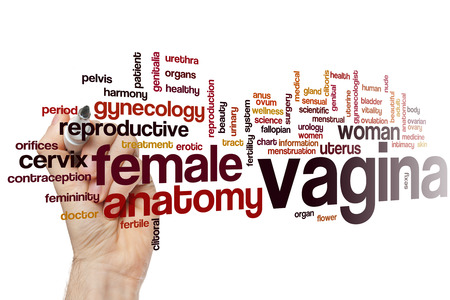 woman vagina: Vagina word cloud concept