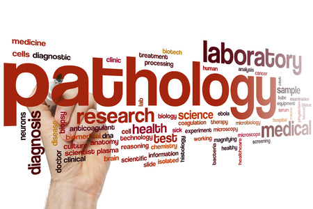 pathology: Pathology word cloud concept Stock Photo