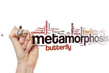 metamorphosis: Metamorphosis word cloud concept