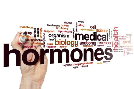 hormonen: Hormonen word cloud concept