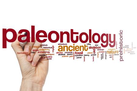 paleontology: Paleontology concept word cloud background Stock Photo