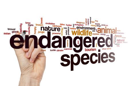 endangered species: Endangered species word cloud