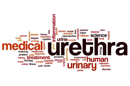 urethra: Urethra word cloud Stock Photo