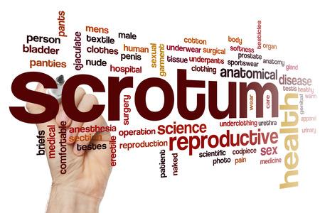 testiculos: Escroto nube de palabras