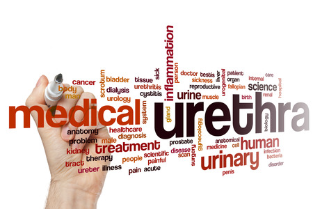 uretra: Uretra nube de palabras Foto de archivo