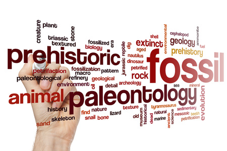 petrified fossil: Fossil word cloud