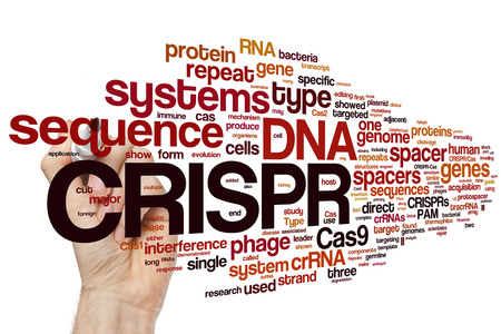 genomes: Hand writing CRISPRCas9 system for editing, regulating and targeting genomes (biotechnology and genetic engineering) word cloud Stock Photo