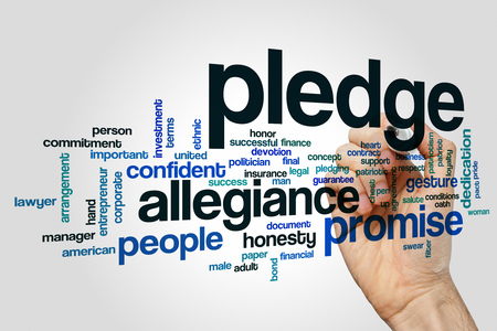 pledge: Pledge word cloud