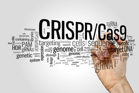 genetic engineering: CRISPRCas9 system for editing, regulating and targeting genomes (biotechnology and genetic engineering) word cloud Stock Photo