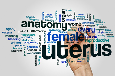 fallopian: Uterus word cloud concept