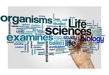 immunotherapy: life sciences biology concept background on white Stock Photo