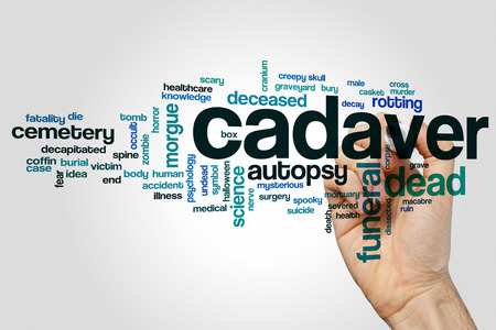 cadaver: Cadaver word cloud concept Stock Photo