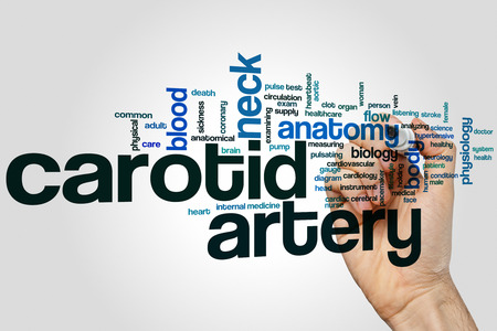 carotid: Carotid artery word cloud concept with anatomy neck related tags