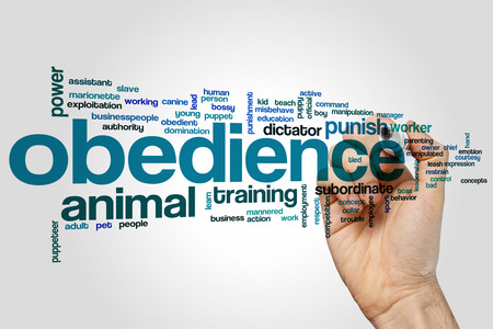obedience: Obedience concept word cloud background