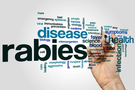 rabies: Rabies word cloud concept Stock Photo