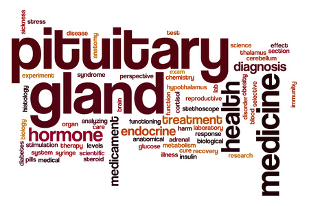 gland: Pituitary gland word cloud Stock Photo