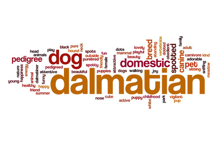 Dalmatian word cloud