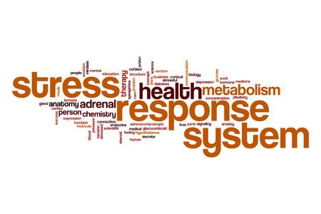 secrete: Stress response system word cloud