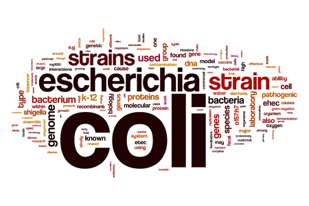 escherichia: Escherichia coli word cloud