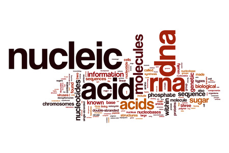 toxins: Nucleic acid word cloud Stock Photo
