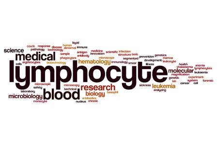 lymphocyte: Lymphocyte word cloud concept Stock Photo
