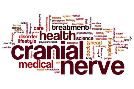 sacral nerves: Cranial nerve word cloud concept