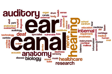 malleus: Ear canal word cloud concept Stock Photo