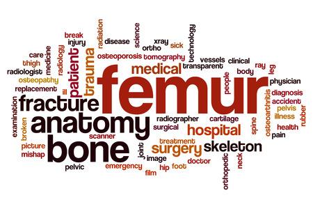 hip fracture: Femur word cloud concept