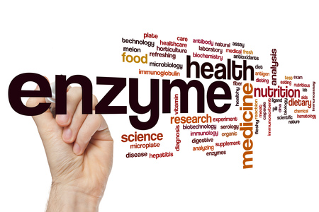 enzyme: Enzyme word cloud concept Stock Photo
