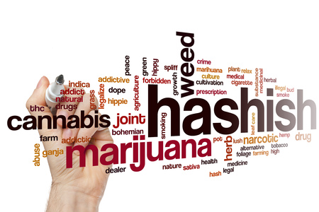 hashish: Hashish word cloud concept