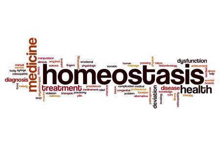 homeostasis: Homeostasis word cloud concept