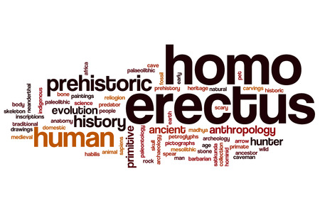 palaeolithic: Homo erectus word cloud concept