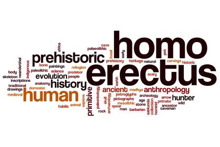homo: Homo erectus word cloud concept