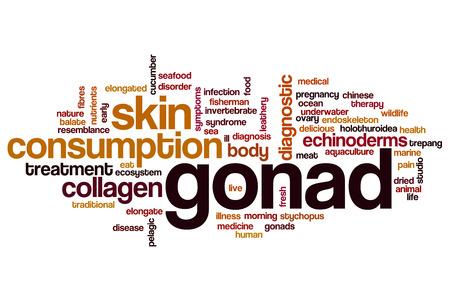 gonads: Gonad word cloud concept