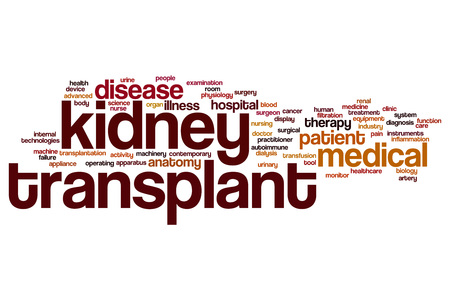 kidney transplant: Kidney transplant word cloud concept