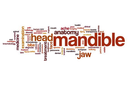 mandible: Mandible word cloud concept