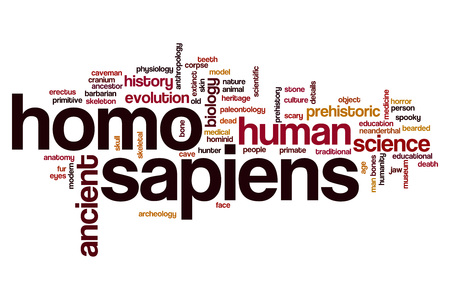 homo: Homo sapiens word cloud concept Stock Photo