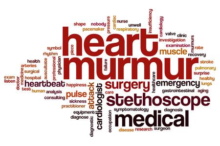 pacemaker: Heart murmur  word cloud concept