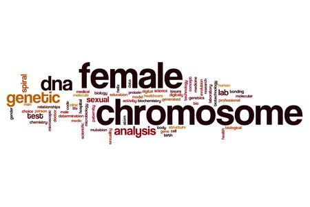 cromosoma: Mujer cromosoma concepto de nube de palabras