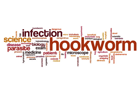 protozoa: Hookworm word cloud concept Stock Photo