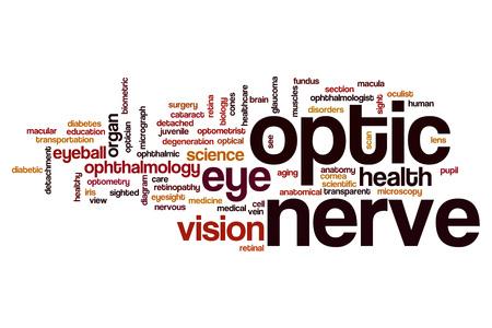macula: Optic nerve word cloud concept