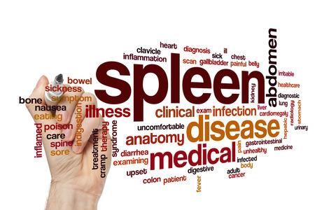 Spleen word cloud
