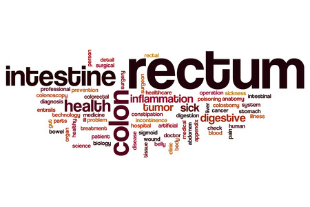 rectum: Rectum word cloud concept
