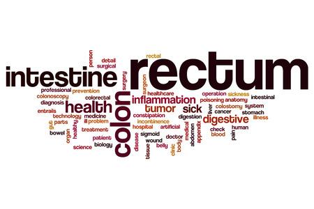 rectum: Rectum word cloud concept