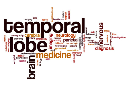frontal lobe: Temporal lobe word cloud concept Stock Photo