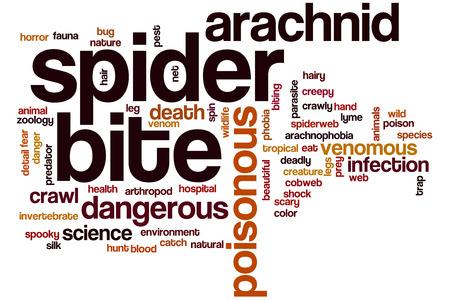 arachnophobia animal bite: Spider bite word cloud concept